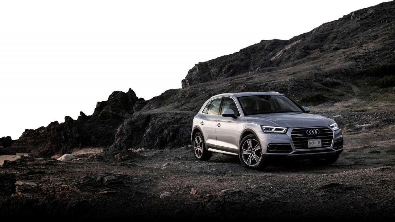 Special Offers on 2019 Audi Q5 at OpenRoad Audi